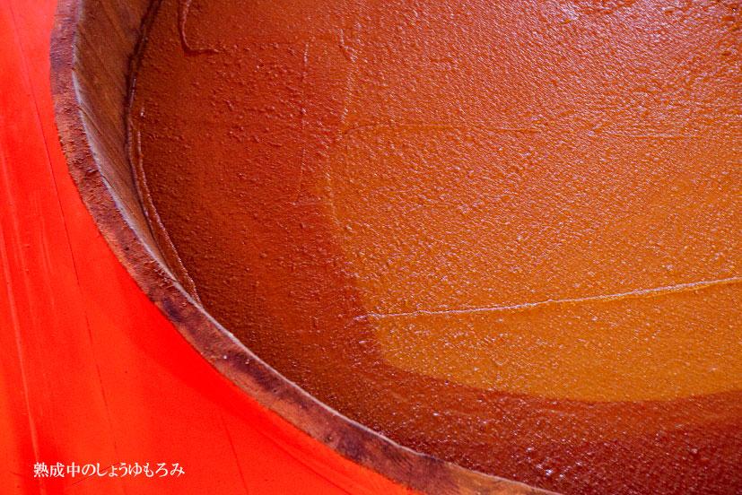 おいしさをつくる発酵のドラマ